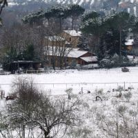 The farm in wintertime.