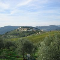 View of the Frescobaldi estate.